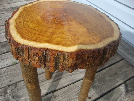 Table Top Is A Natural Live Edge Osage Orange Tree Slice Piece With  Beautiful Grain.