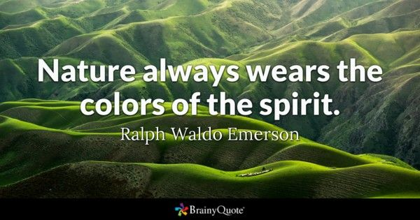 Nature Quotes Delectable Ralph Waldo Emerson Quotes  Ralph Waldo Emerson And Emerson