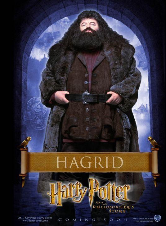Harry Potter And The Sorcerer S Stone Hagrid Poster Design By B D Fox Independent Phantastische Tierwesen Stein Der Weisen Tierwesen