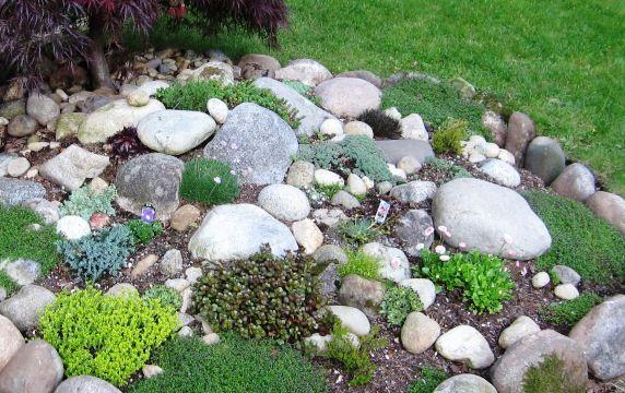 Rock Garden Ideas For Front Rg Rockery Garden Landscaping With Rocks Backyard Garden