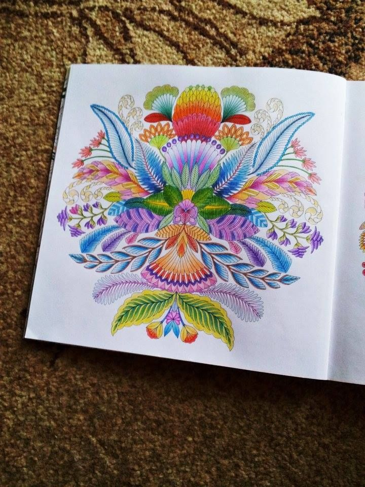 First Page From Coloring Book Tropical Wonderland