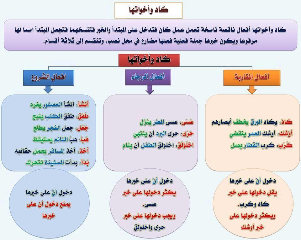 مدخل الى اللغة العربية بطاقات Apprendre L Arabe Langue Arabe Cours D Arabe