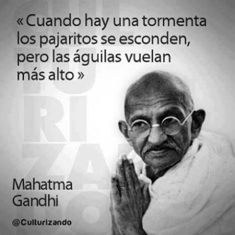 Frases De Gandhi About You Pinterest пословицы