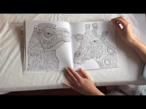 Tierzauber Animal Magic Colouring Book Flip Through Video Animal Magic Coloring Books Animals