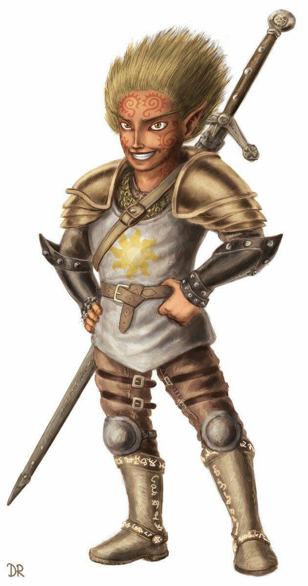 Gnome Paladin - Pathfinder PFRPG DND D&D d20 fantasy | Dungeons and dragons characters, Fantasy ...