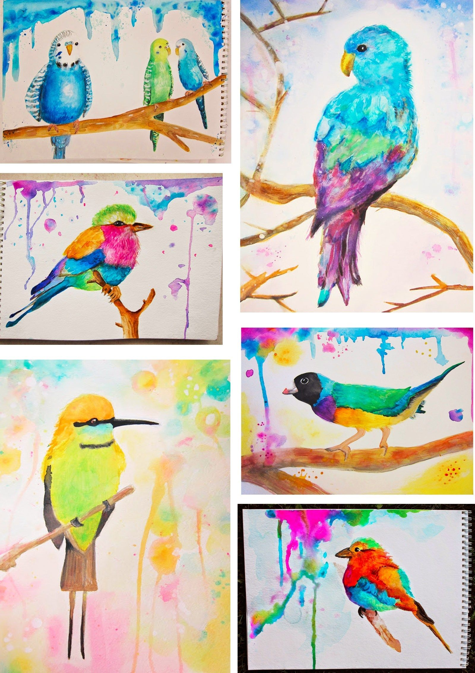 Watercolor Animals With 5th And 6th Grade
