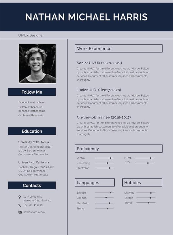 30+ Best Resume Formats DOC, PDF, PSD Modern resume