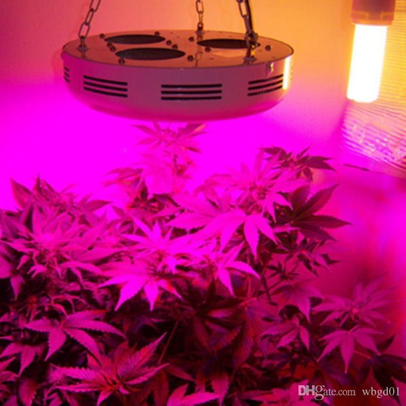 Full Spectrum Led Grow Lights Reviews 1000w Led Grow Light Best