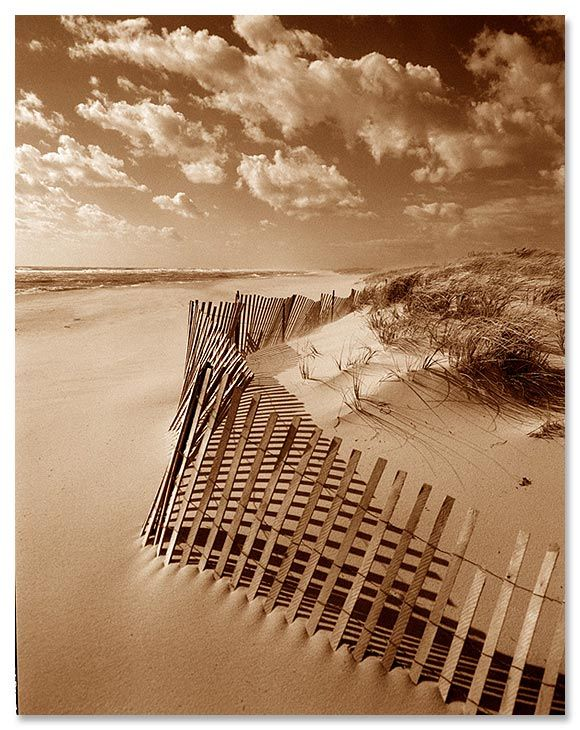 Love this skiff beach fence soft canvas print on