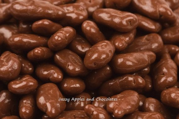 Chocolate Pecans