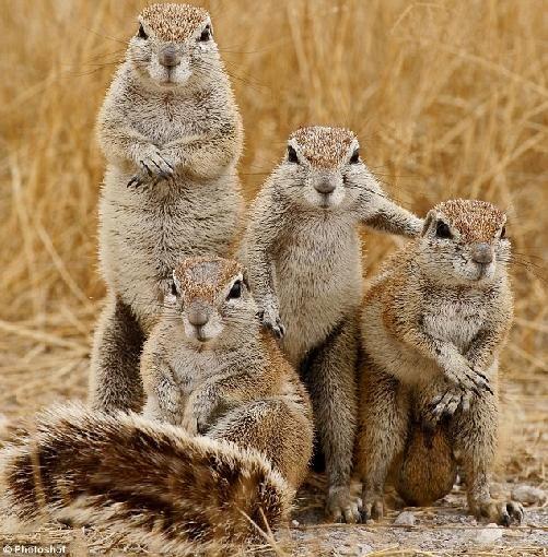 Familienporträt :-))