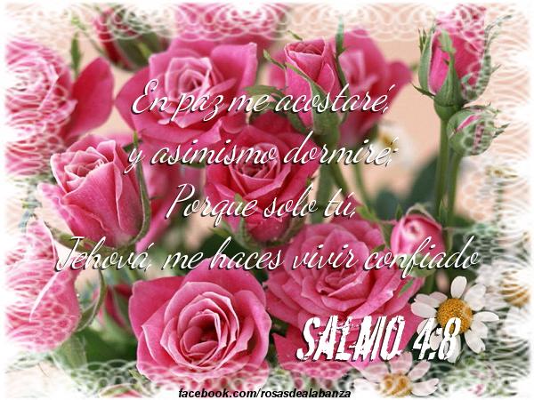 #Salmo 4:8 #versosbiblicos #biblia