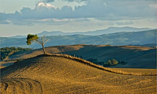 """""""The Val d'Orcia The Val d'Orcia is a wide valley located in Tuscany, in the province of Siena and partly within that of Grosseto. Characterized by gentle to ...""""  Sergio Lazzerini - Google+"""