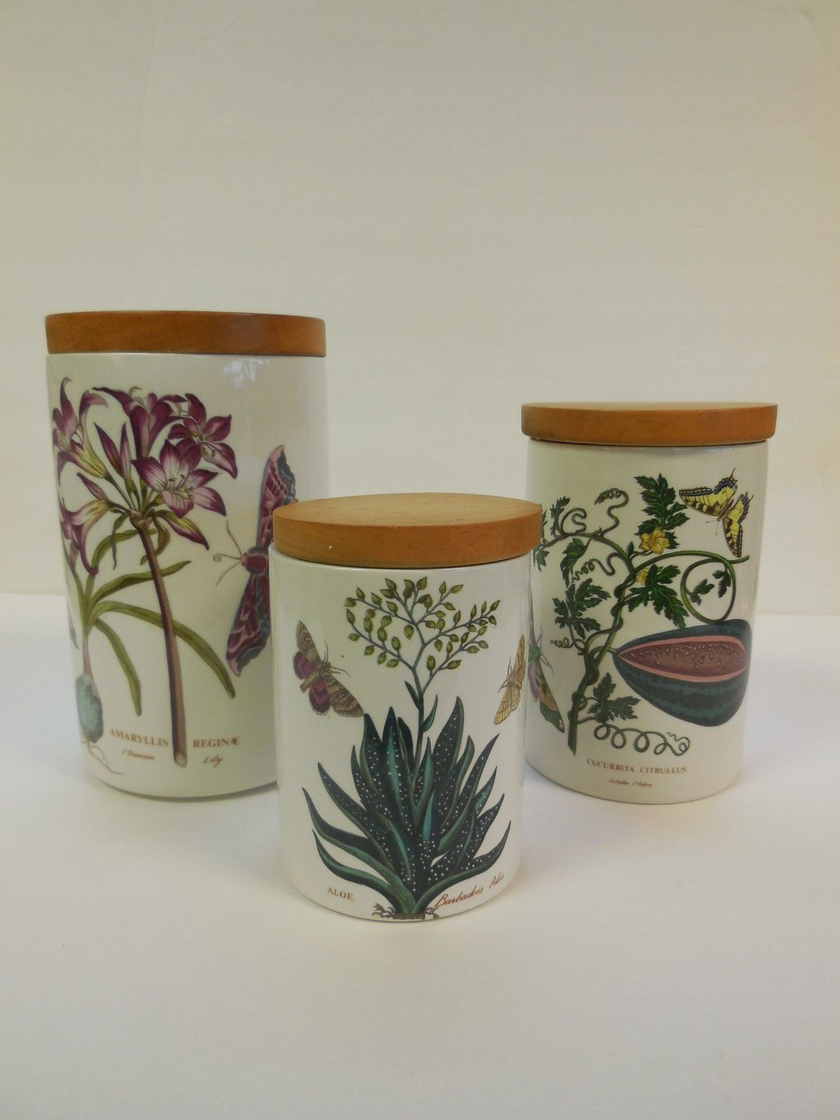 3pc Vintage Portmeirion Pottery Botanic Garden Canister Set Older Mark Aloe Gardens Vintage