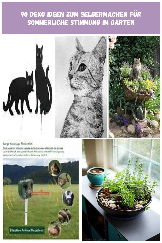 Wenko Vogelschreck Katzen 2er Set Vertreiben Verjagen Schreck Scheuchen Garten Terrasse Katzen Garten Diy Garden Wordpress Theme Responsive Garden Design