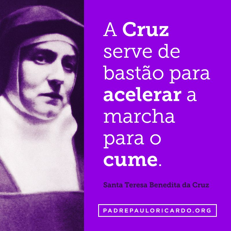 Santa Teresa Benedita Da Cruz Santa Edith Stein Frases A Cruz