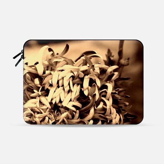 chrysanthemum - 2