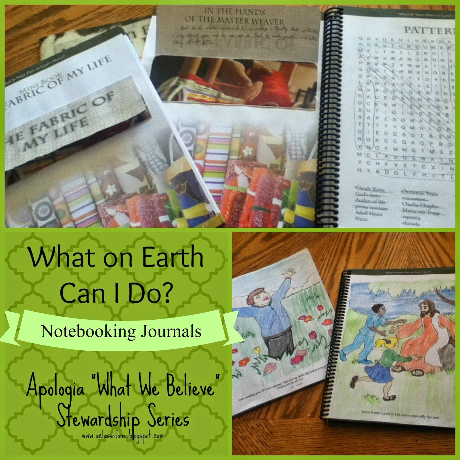 Teaching Biblical Worldview And Stewardship To Our