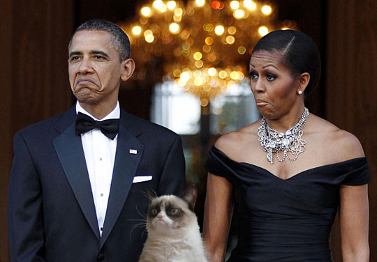 Grumpy cat with the President and First Lady haha