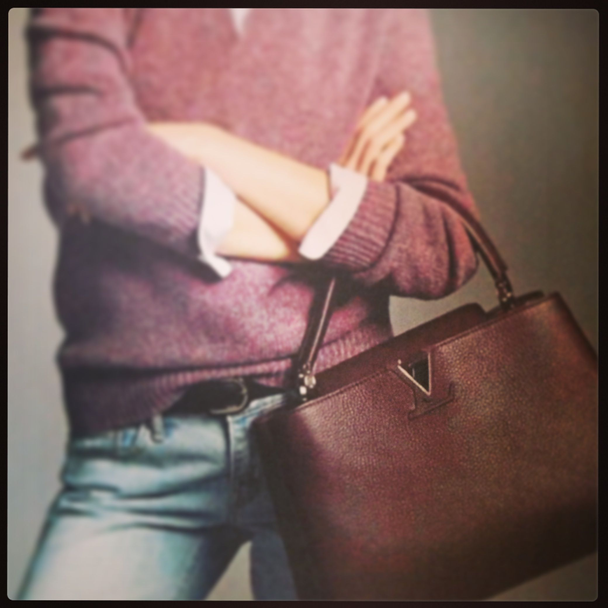 LouisVuitton parnassea bags