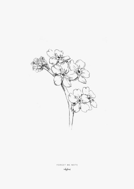 Printables Forget Me Nots Forget Me Not Tattoo Flower Sketches How To Draw Hands