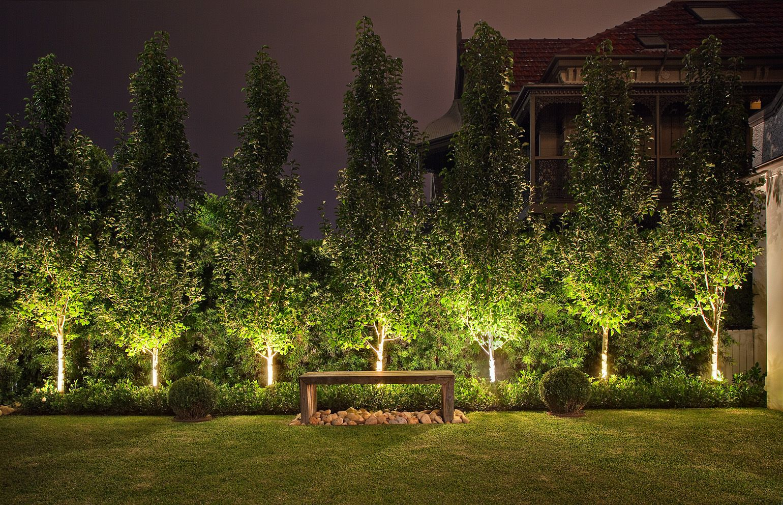 Contemporary Australian Garden Ornamental Pear Trees