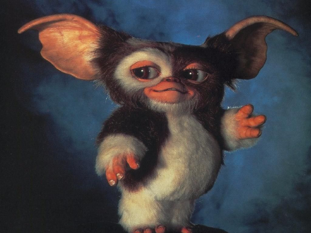 Suddenly Sabrina on Twitter Movies, Gremlins gizmo
