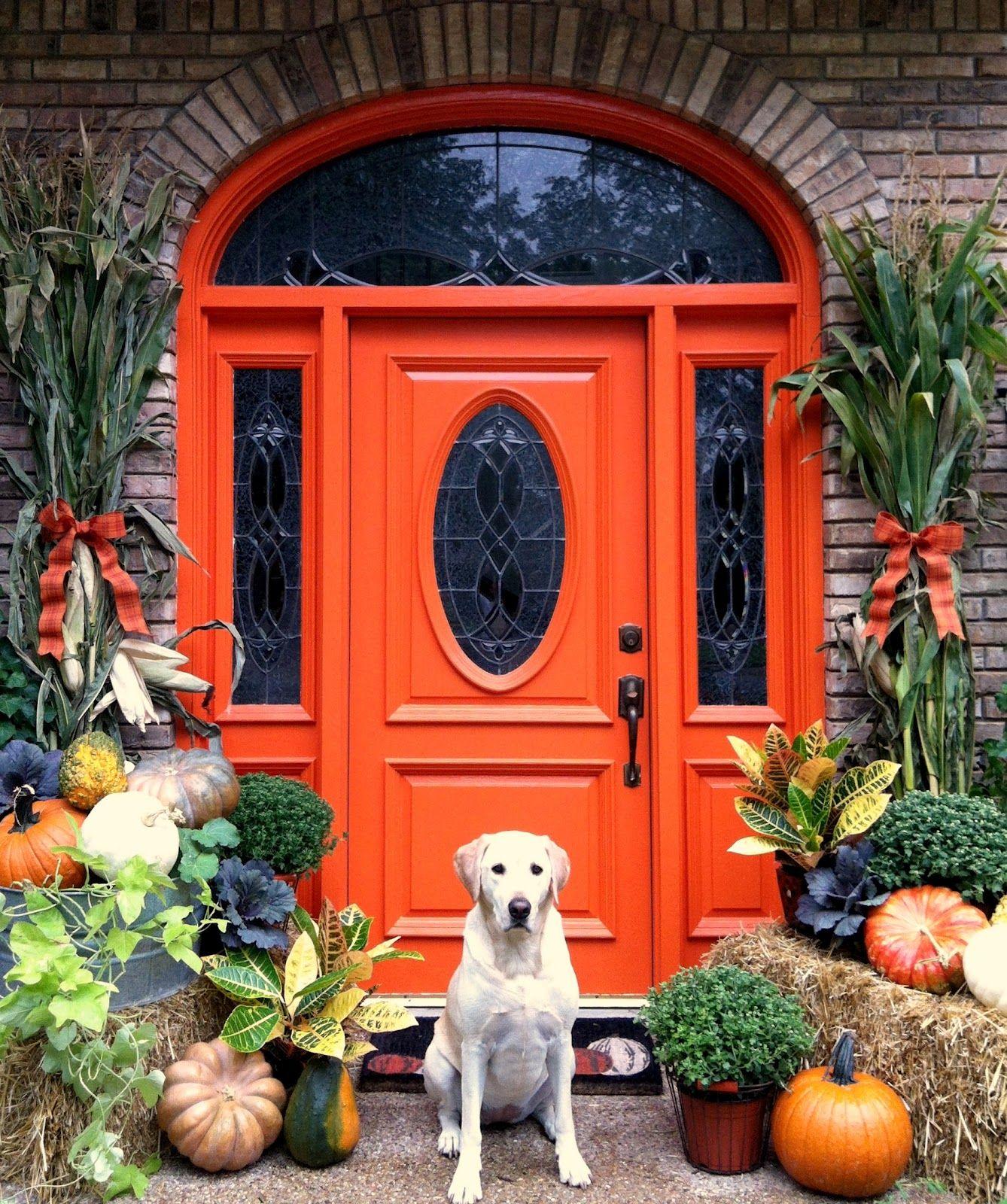 front door decor: thanksgiving wreath ideas | wreaths, front doors
