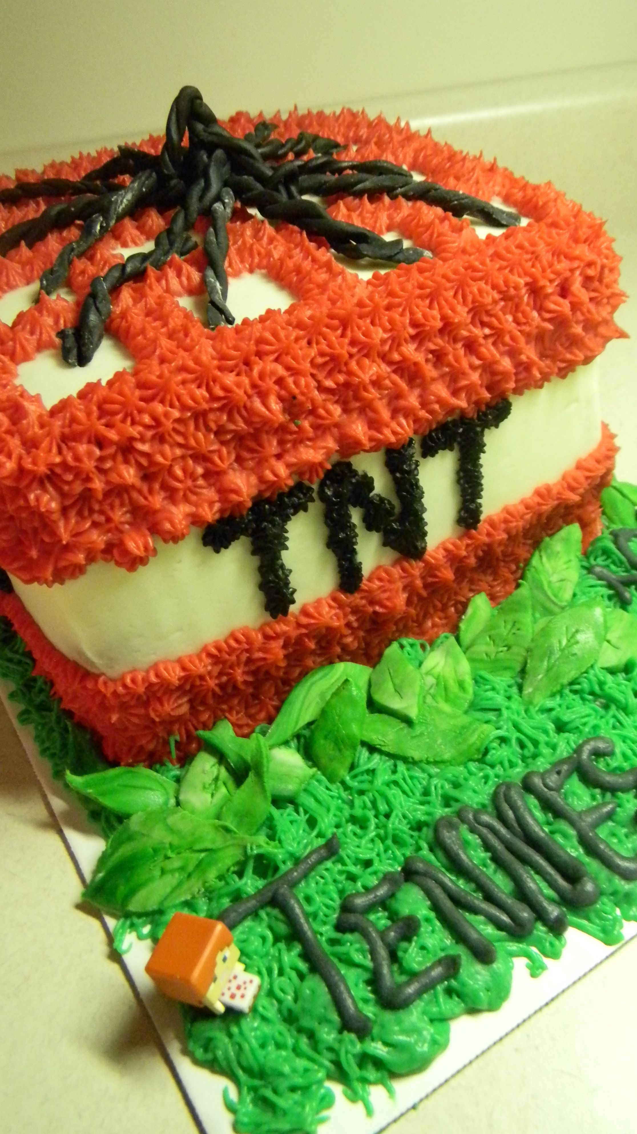 Minecraft Tnt Cake With Images Minecraft Cake Minecraft Birthday