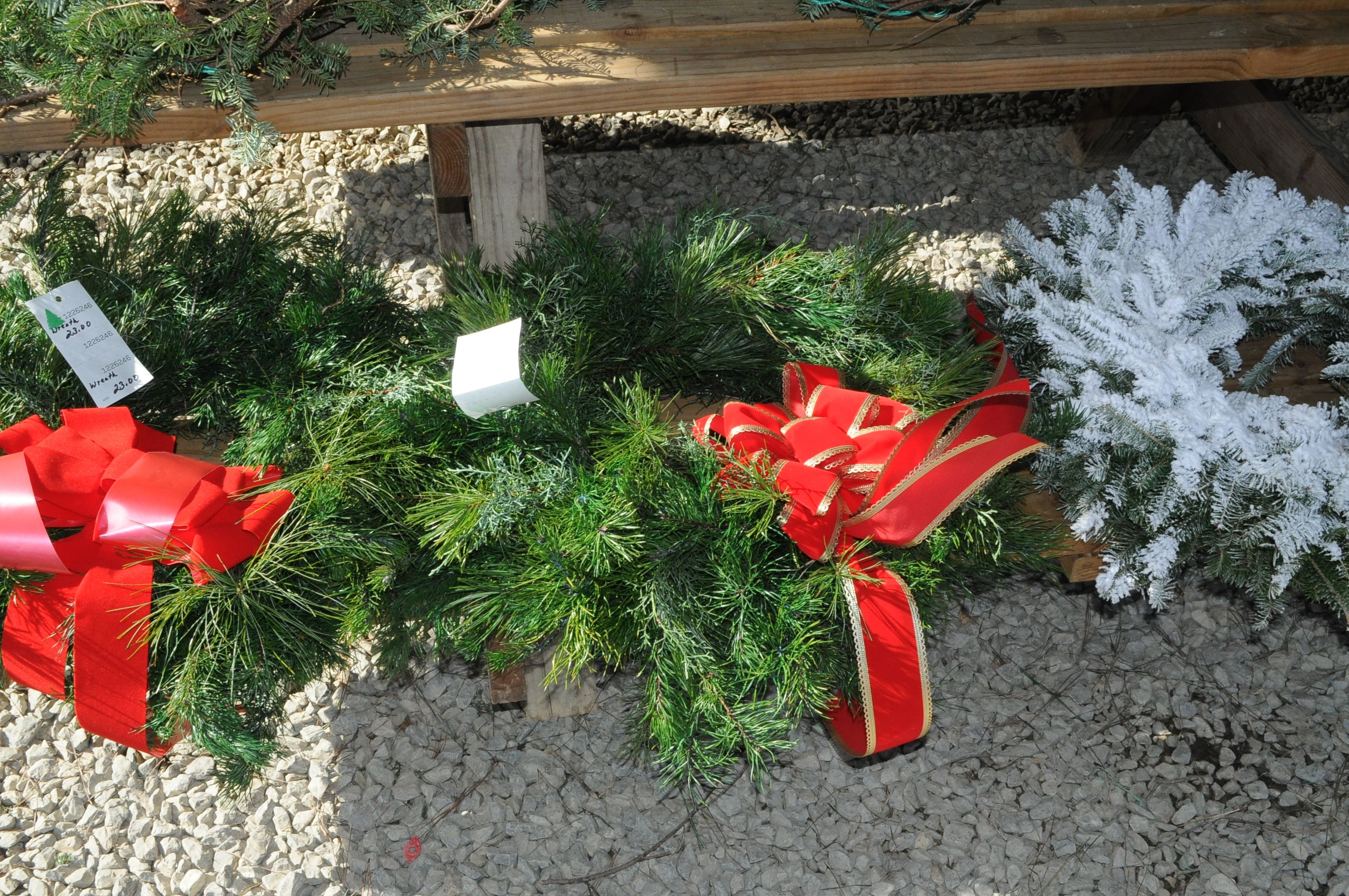 Christmas Tree Farm Huntsville Al