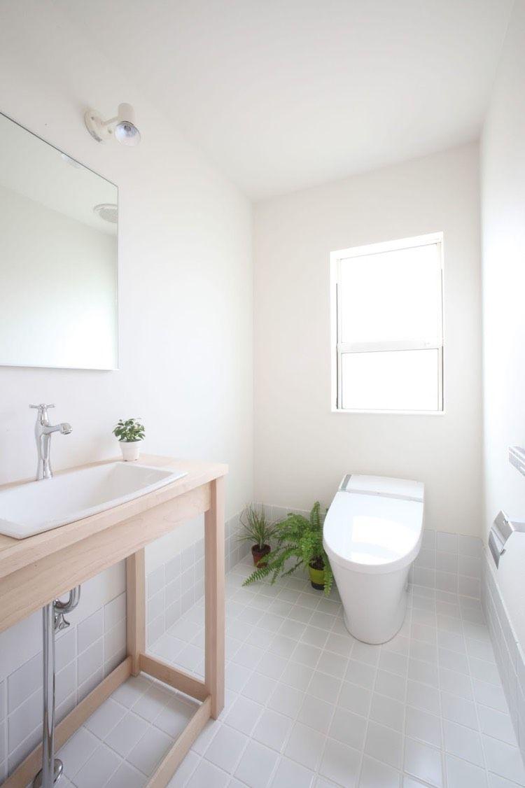 Home-office-innenarchitektur pflegeleichte zimmerpflanzen als bestandteil der innenarchitektur