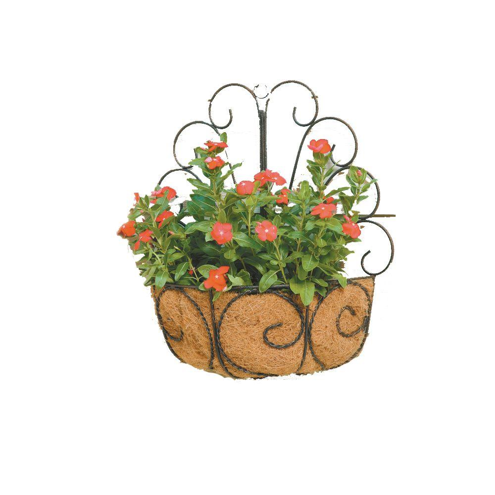 Deer Park Metal Peacock Wall Basket With Coco Liner Wb107x Metal Wall Planters Baskets On Wall Basket Planters