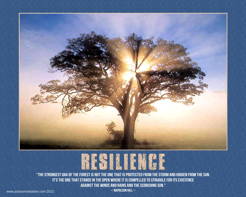 Resilience Ideas