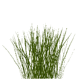 Tall Grass Png Images Pictures Tall Grass Grass Image