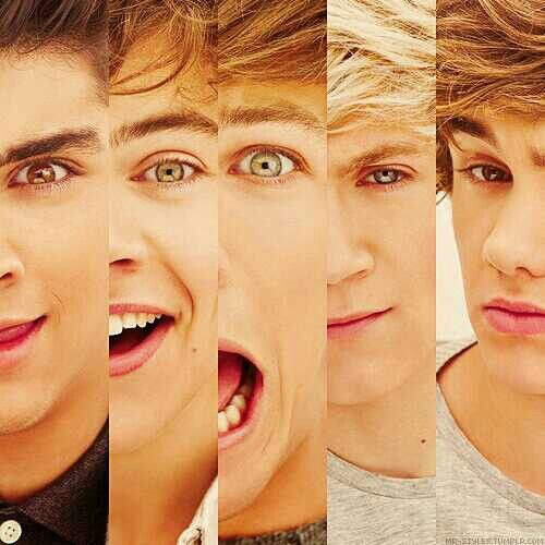 Can U Tell Which One Is Which If Ur A True Directioner You Ll Understand One Direction Pictures One Direction Zayn Malik I Love One Direction