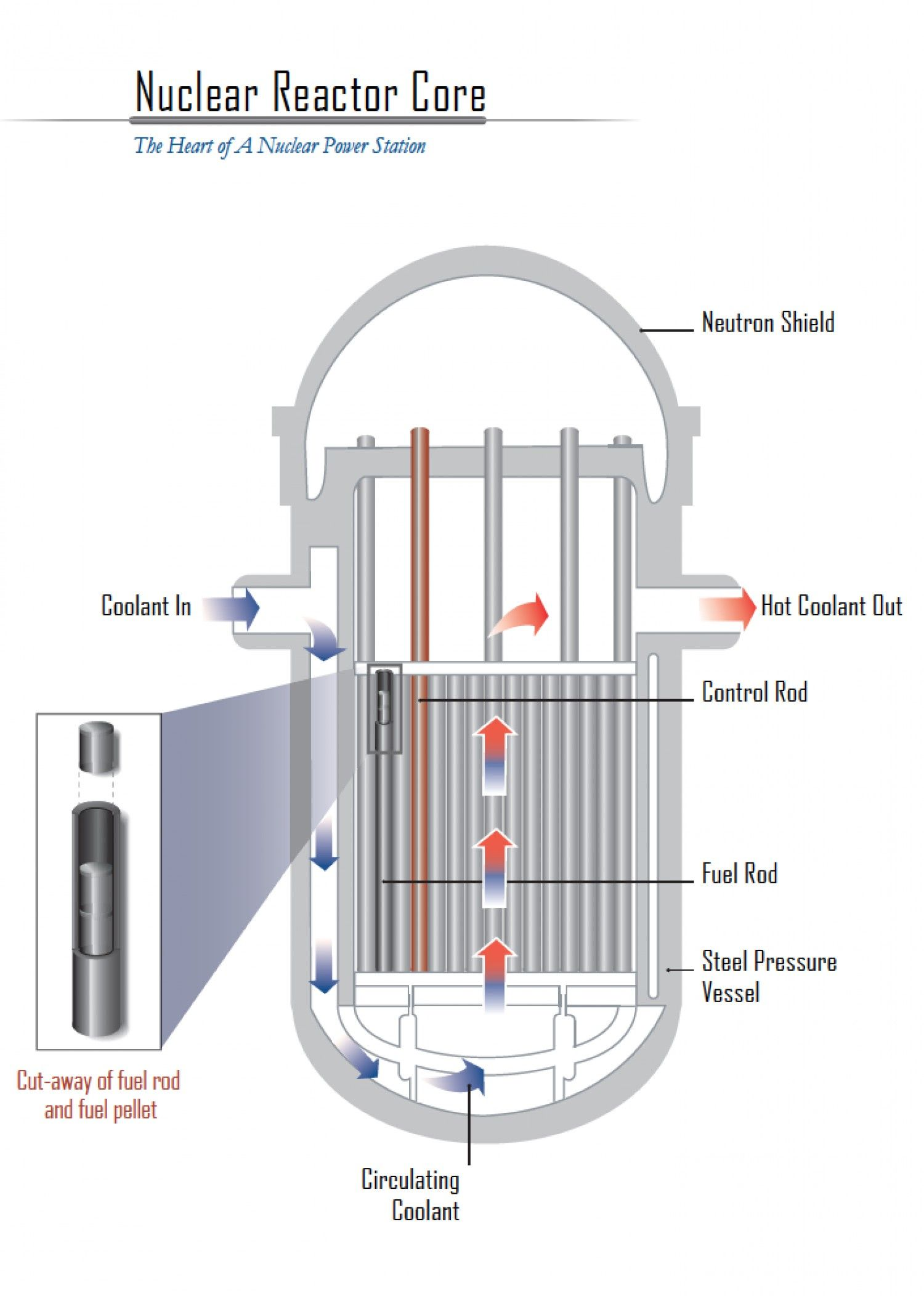 hight resolution of nuclear reactor core schematic infographic