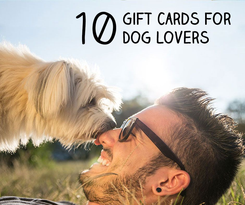 The 10 Best Gift Cards for Dog Lovers Pet insurance