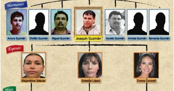 El Chapo Family Tree Google Search Teaching Spanish
