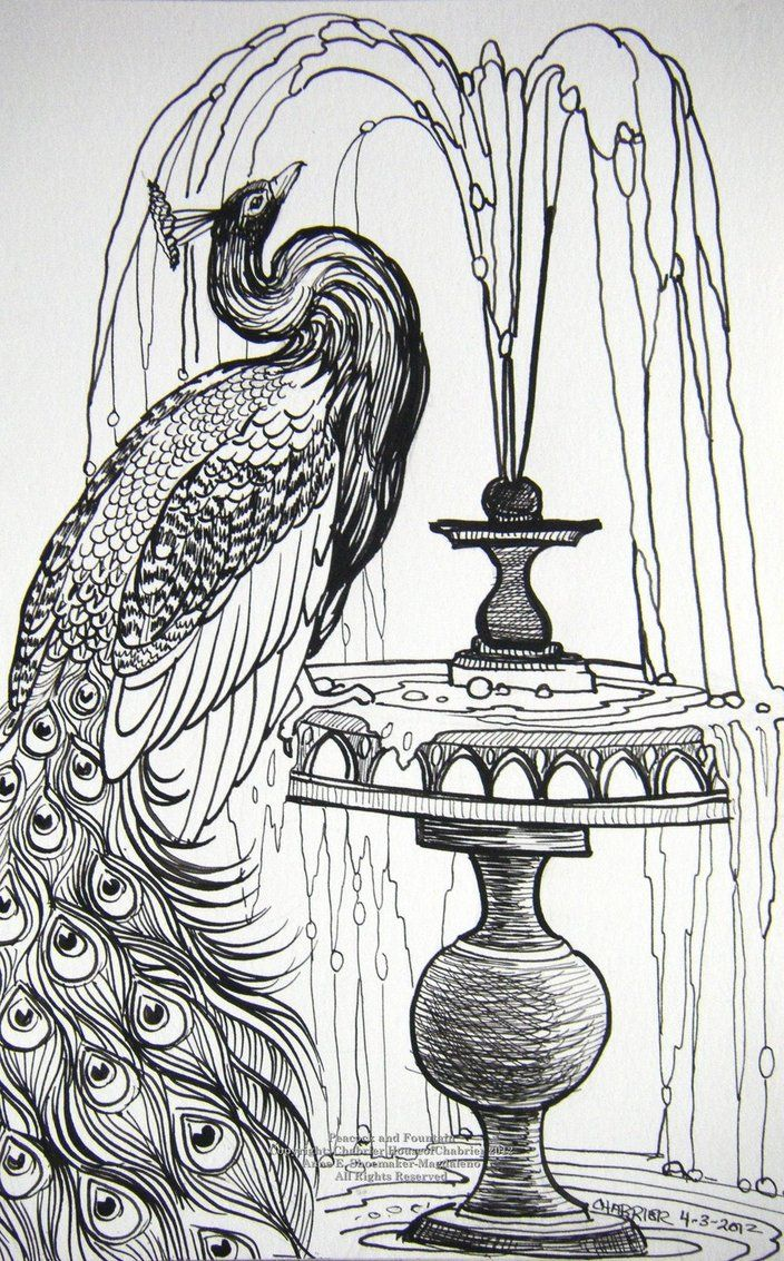 Peacock And Fountain By Houseofchabrier On Deviantart Coloring