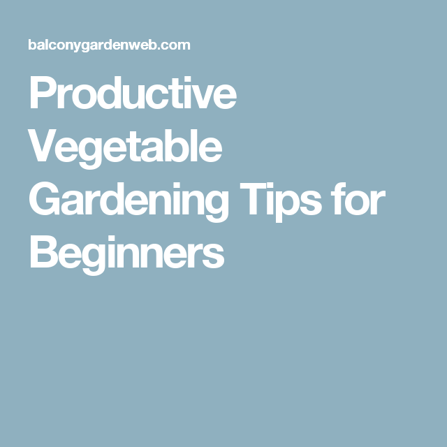 Flower Garden For Dummies: Beginner's Guide For Productive Vegetable Garden