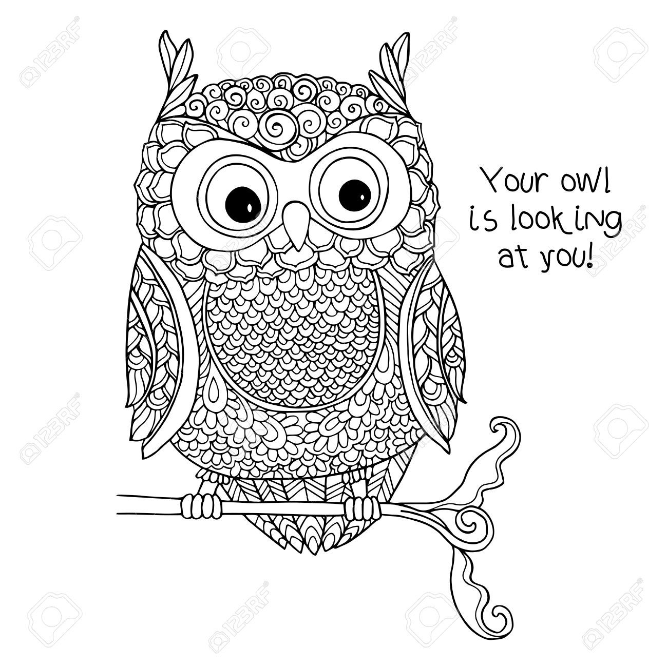 Coloring book outlines - Coloring Book For Adult And Older Children Coloring Page With Cute Owl Outline Drawing In Zentangle Style Buy This Stock Vector On Shutterstock Find