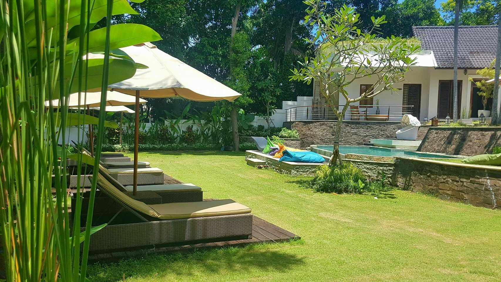 Garden and pool view from Boutique room terrace 💚