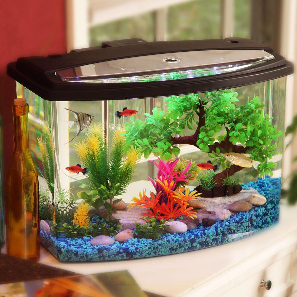 Hawkeye Aquarium Kit 7 Gallon Tank Fish Led Light Colors Power Filter Bow Cool Fish Tanks Small Fish Tanks Aquarium Fish Tank