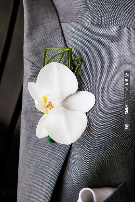 Simple white boutonniere | VIA #WEDDINGPINS.NET