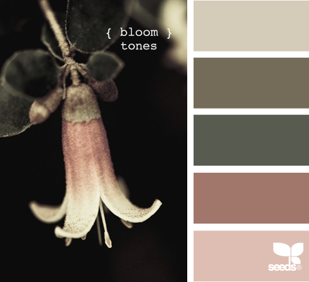 this website lets you search for any color and it will match it with color schemes! amazing!