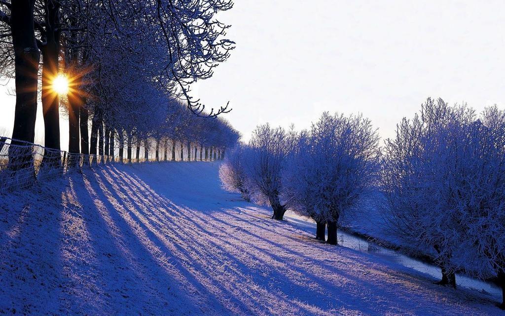 Filipe Moura On Twitter Winter Landscape Winter Scenery Free Winter Wallpaper Windows 10 wallpaper 1920x1080 winter