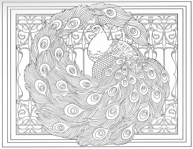 Mandalas Para Pintar Animal Bordeado De Paisaje On: Peacock Coloring Page 27/31