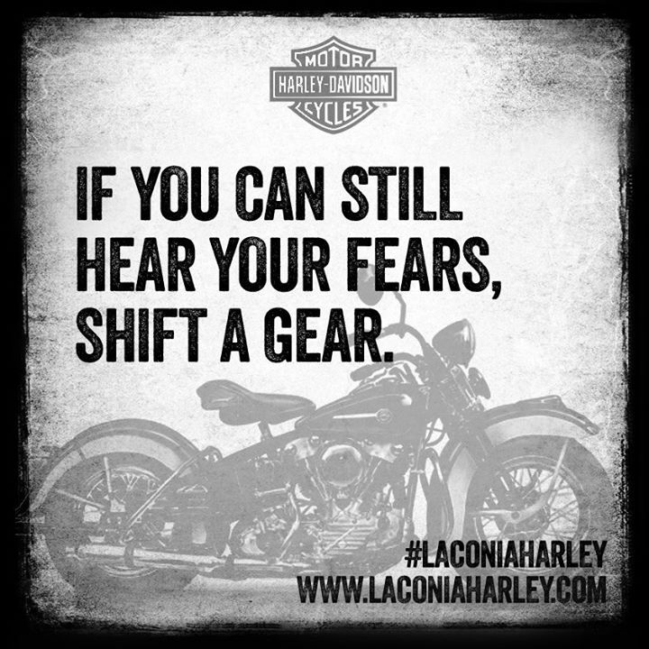 Harley Davidson Quotes Extraordinary Pinmartin Twofeather On Places To Visit  Pinterest  Bikers