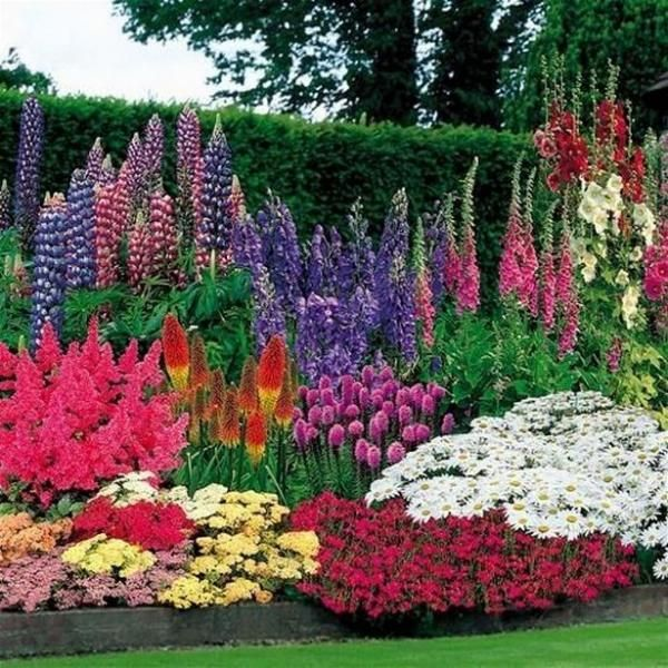 60 Beautiful Front Yard Rock Garden And Landscaping Ideas: 60 Beautiful Small Flowering Trees Front Yards Design