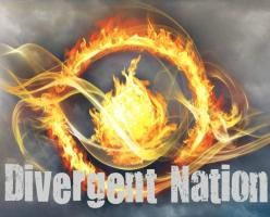 Divergent Nation CafePress Store- Need it all